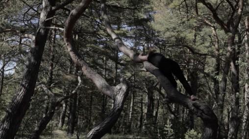 Laura Böök: Camouflage, 2017, videoteos, 4 min. 34 sek.